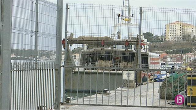 Les+barques+d%27arrossegament+de+Balears+no+pesquen+gambes+des+de+fa+tres+mesos