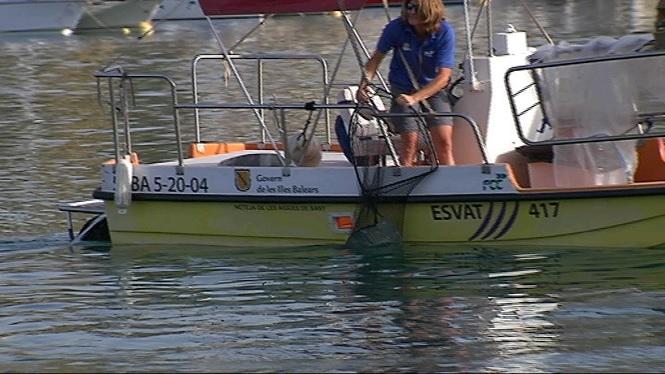 Les+barques+de+neteja+del+litoral+recullen+m%C3%A9s+de+15+tones+de+residus+durant+el+juliol