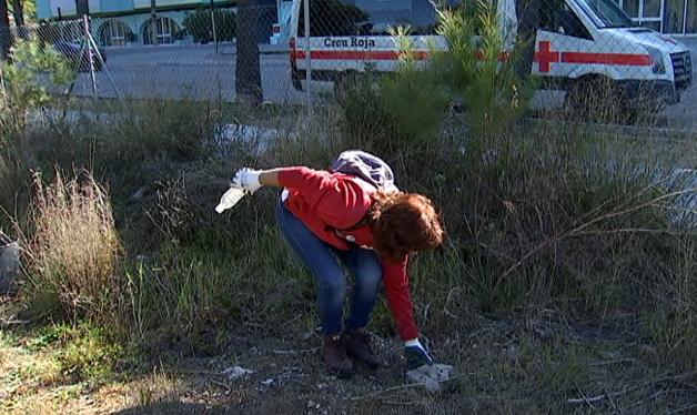 Voluntaris+de+la+Creu+Roja+netegen+residus+al+Prat+de+Magaluf
