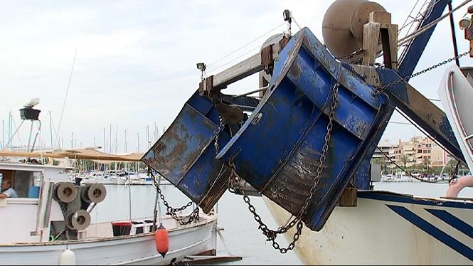 Pesca+d%27arrossegament+menys+agressiva+pel+fons+mar%C3%AD