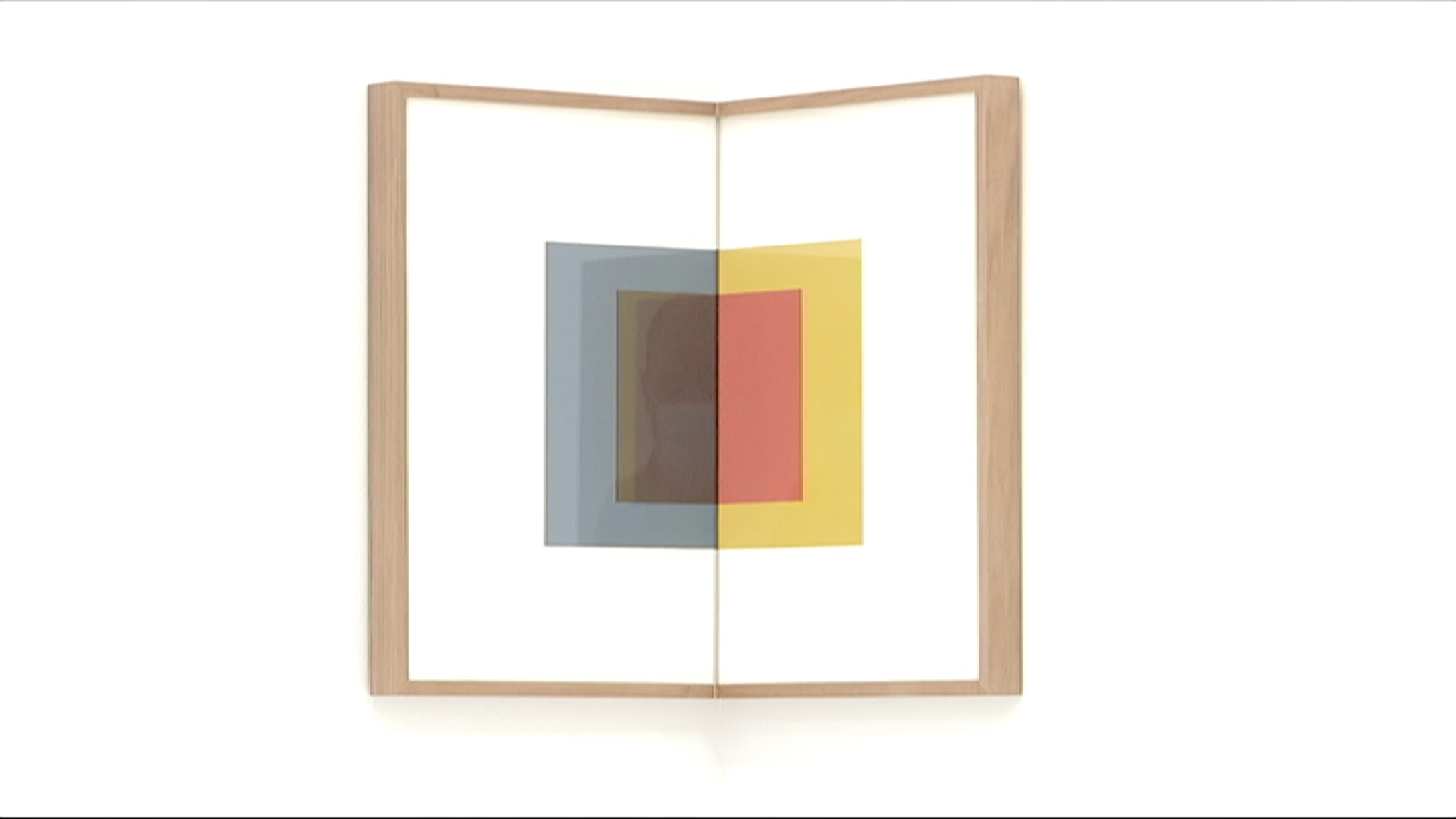 Les+galeries+L21+i+Gerhardt+Braun+inauguren+exposicions