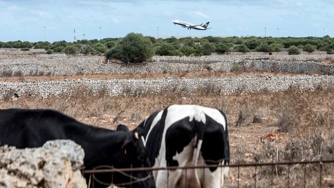 La+temporada+alta+acaba+a+Menorca+amb+la+meitat+de+vols+programats+i+el+tancament+avan%C3%A7at+d%26apos%3Bhotels
