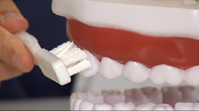 Augmenten+les+malalties+a+les+genives%2C+sobretot+la+periodontitis