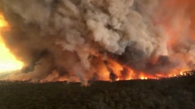 Els+incendis+a+Austr%C3%A0lia+eleven+a+18+les+v%C3%ADctimes+mortals