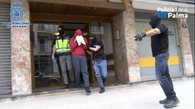 La+Policia+Nacional+i+la+Policia+Local+desmantellen+una+plantaci%C3%B3+de+marihuana+a+un+pis+de+Palma