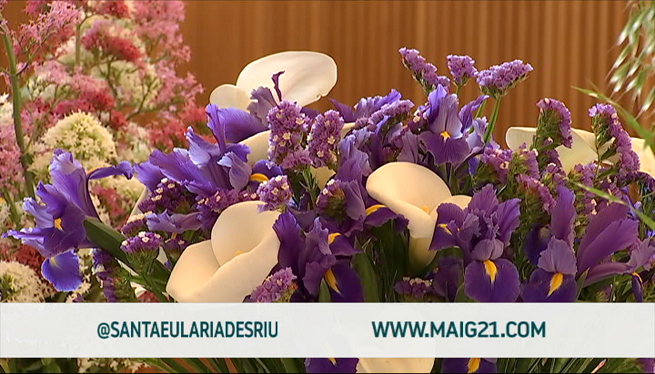 Flors+i+plantes+donen+color+a+les+Festes+de+Maig+de+Santa+Eul%C3%A0ria