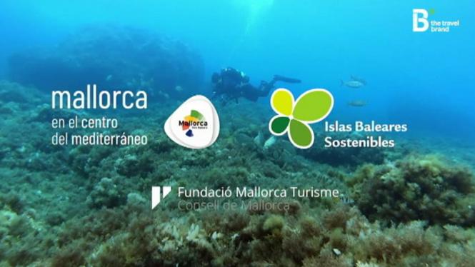 El+Consell+de+Mallorca+promociona+l%27illa+com+a+destinaci%C3%B3+segura+a+la+primera+campanya+de+com%C3%A0rqueting