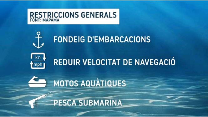 Prohibit+pescar+sense+perm%C3%ADs+en+aig%C3%BCes+exteriors+de+Sa+Dragonera