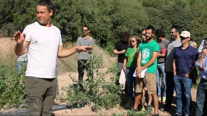 Agricultors+balears+aprenen+t%C3%A8cniques+fruiteres+a+Lleida