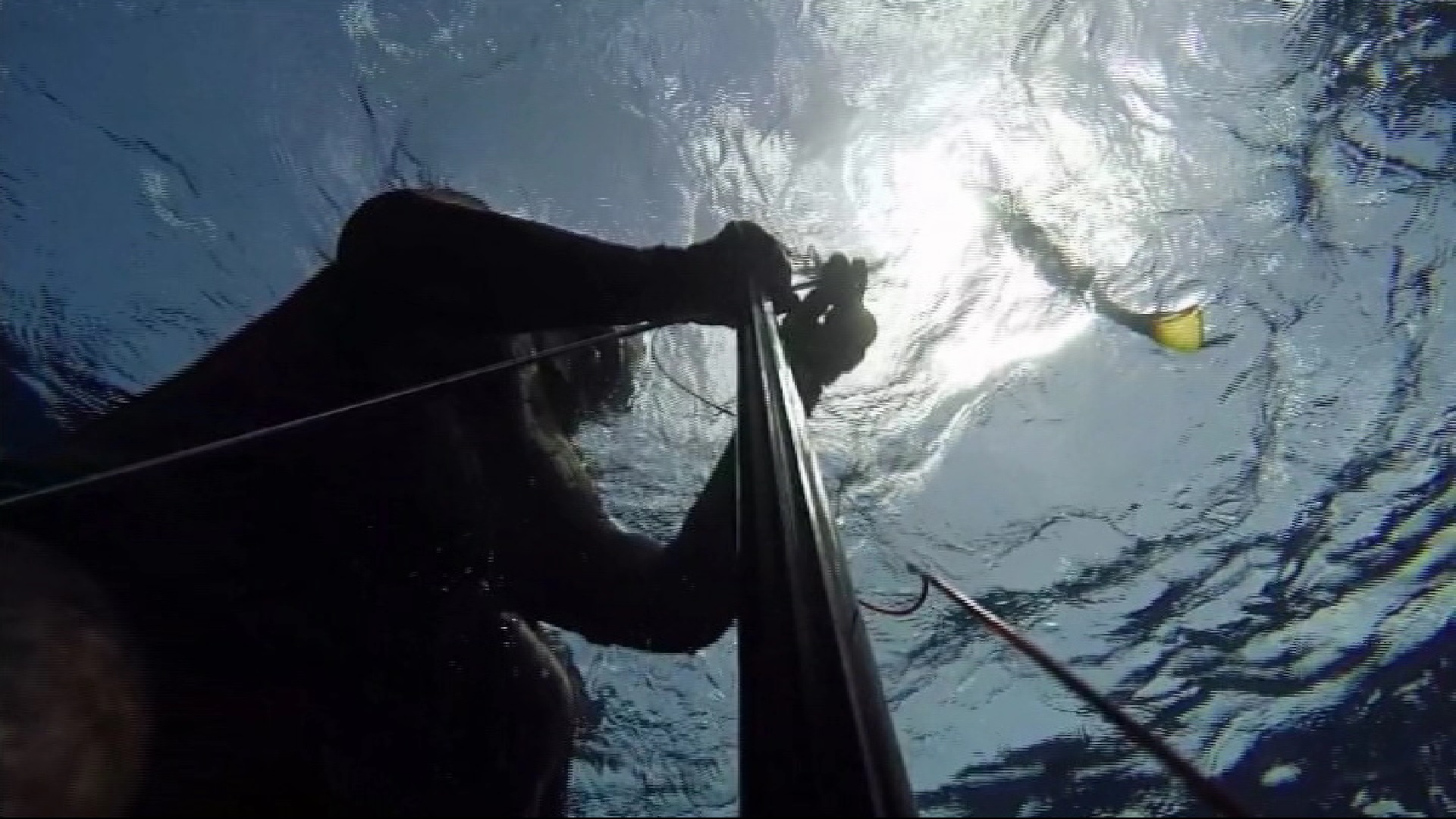 La+pesca+submarina+vol+poder+exercir+per+ajudar