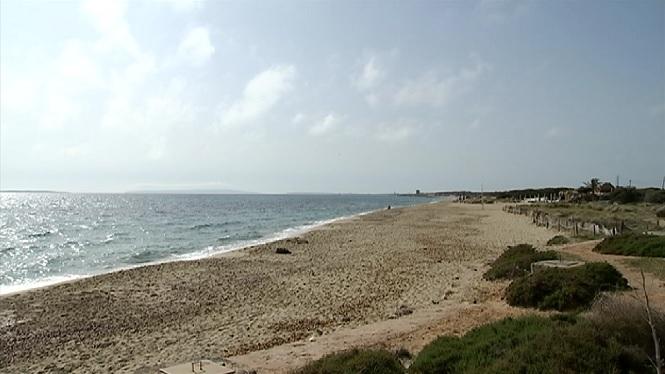 La+Gu%C3%A0rdia+Civil+localitza+una+embarcaci%C3%B3+amb+sis+migrants+a+la+platja+des+Cavallet