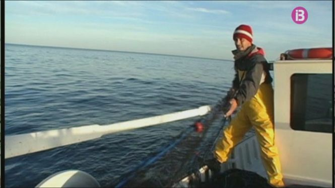 Els+pescadors+podran+descarregar+i+pesar+les+seves+captures+a+d%C3%A0rsenes+i+refugis+de+costa