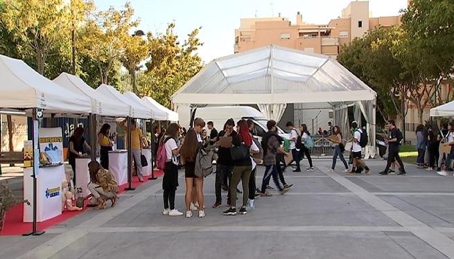 CREATHL%C3%93%2C+la+primera+fira+d%27emprenedors+a+Eivissa