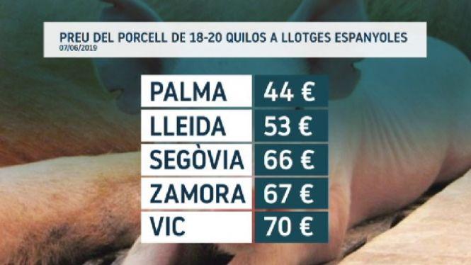 Balears+no+nota+la+pujada+del+preu+de+la+carn+de+porc+provocat+per+la+pesta+porcina+internacional