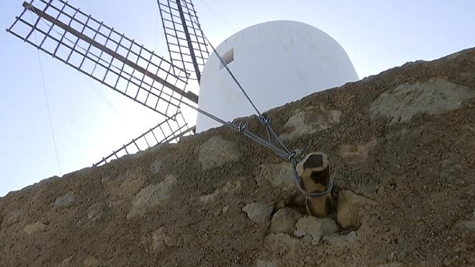 Noves+antenes+i+arbre+pel+mol%C3%AD+eivissenc+des+Porxet