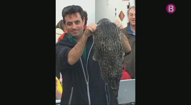 Capturen+un+peix+globus+de+8+kgs+a+la+costa+est+de+Menorca