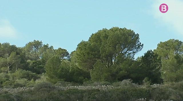 Milloren+les+condicions+meteorol%C3%B2giques+a+Menorca