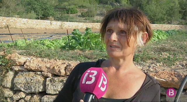 Puja+la+superf%C3%ADcie+de+producci%C3%B3+ecol%C3%B2gica+conreada+a+Eivissa
