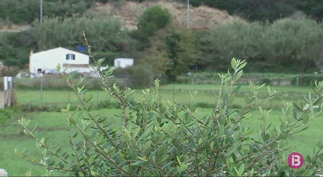 Les+Jornades+Europees+del+Patrimoni+debaten+a+Menorca+com+conservar+i+gestionar+els+paratges