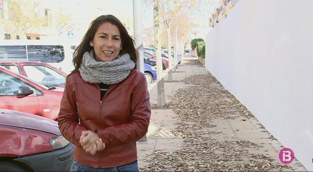 La+neteja+vi%C3%A0ria+de+les+fulles+seques+dels+arbres+provoca+queixes+a+Ciutadella