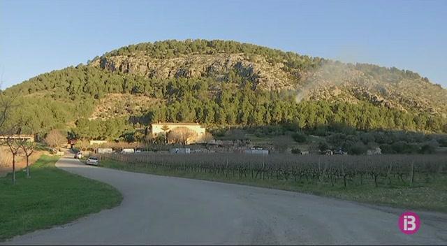 Pollen%C3%A7a+desperta+amb+un+incendi+al+Puig+de+Maria+el+dia+de+Sant+Antoni