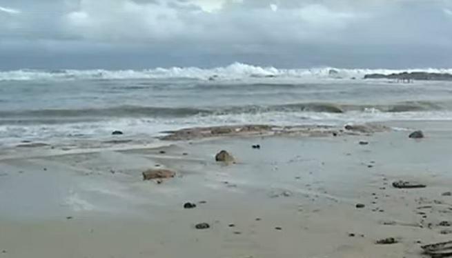 Apareix+un+cad%C3%A0ver+a+la+platja+de+Llevant+de+Formentera