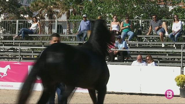 M%C3%A9s+de+100+exemplars+participaran+a+la+Fira+del+Cavall