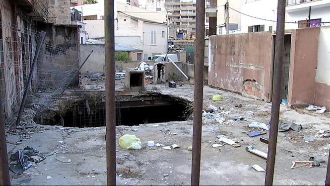 Les+rates+nien+als+edificis+abandonats+de+s%27Arenal