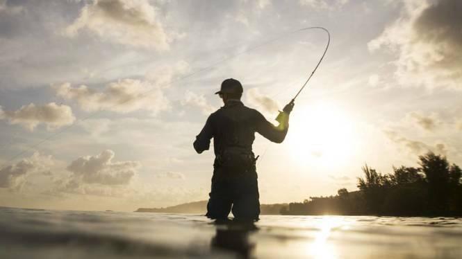 El+GOB+Menorca+denuncia+un+descens+del+90%25+de+les+sancions+de+pesca+irregular