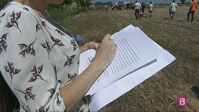 Una+notaria+pren+mostres+de+les+terres+contaminades+al+Parc+Natural+de+Ses+Salines