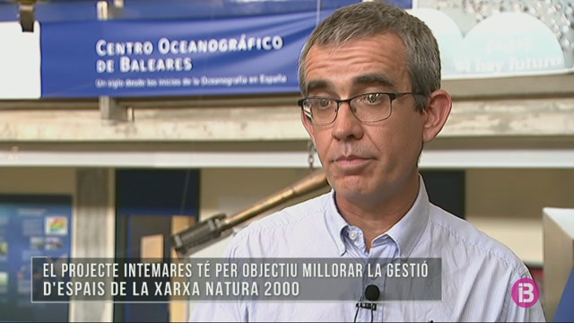 L%27IEO+estudia+la+flora+i+fauna+de+les+muntanyes+submarines+balears+per+declarar+la+zona+com+a+LIC