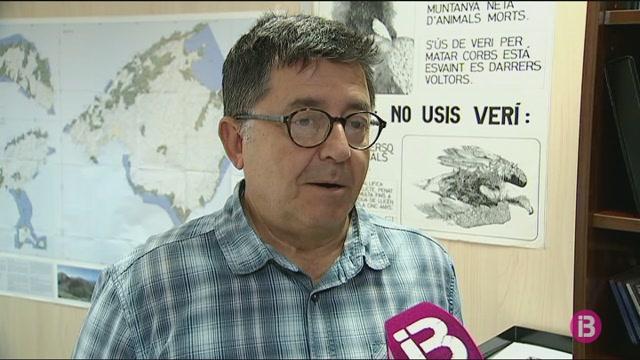 Minva+a+Balears+la+mortalitat+de+milanes+per+l%27%C3%BAs+de+verins+i+raticides