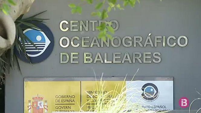 Reclamen+una+nova+direcci%C3%B3+per+al+Centre+Oceanogr%C3%A0fic+de+illes