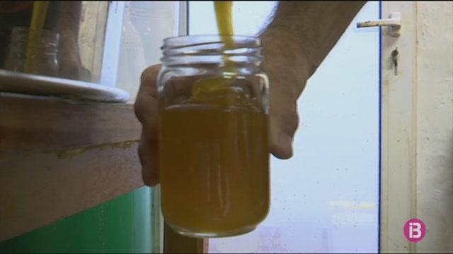 Els+apicultors+denuncien+la+trampa+de+la+mel+industrial