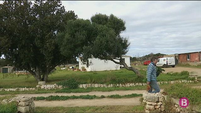 Agroxerxa+ja+connecta+el+consumidor+amb+115+productors+de+proximitat+a+Menorca
