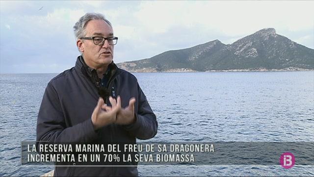 M%C3%A9s+peixos+en+aig%C3%BCes+de+sa+Dragonera%2C+des+que+fou+declarada+reserva+marina
