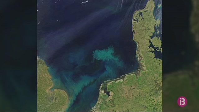 Noves+tonalitats+a+la+mar+a+causa+del+canvi+clim%C3%A0tic