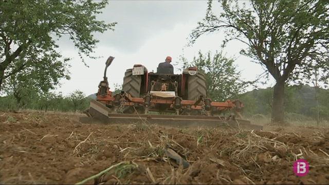 AJASA+denuncia+que+el+nou+REIB+no+t%C3%A9+en+compte+el+sector+agrari