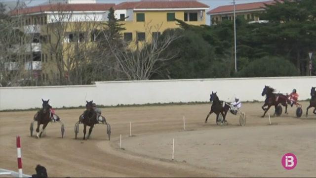 Sue+Manners%3A+una+experta+corredora+de+cavalls+a+trot+de+75+anys