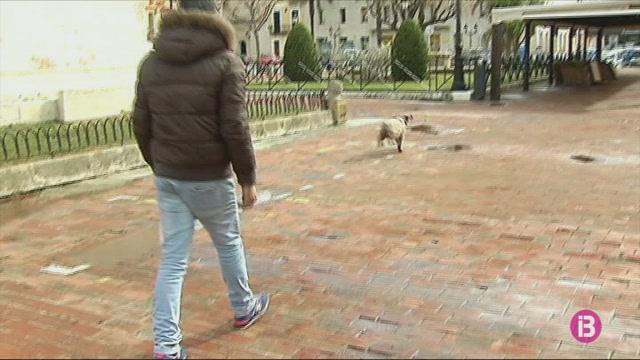 Prohibit+passejar+amb+cans+per+afavorir+la+nidificaci%C3%B3+de+les+aus
