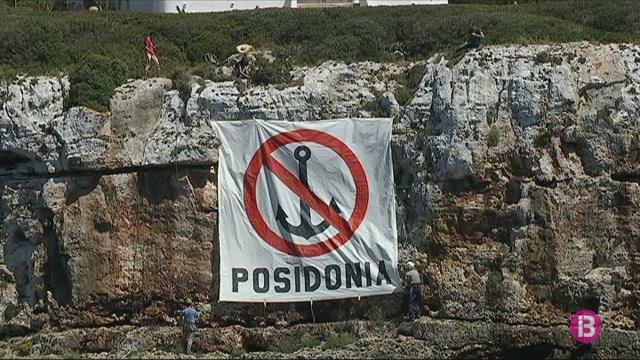 Salvem+Portocolom+reclama+m%C3%A9s+protecci%C3%B3+per+a+la+posid%C3%B2nia