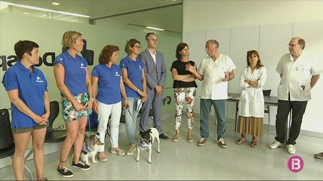 Els+pacients+del+Mateu+Orfila+ja+poden+rebre+les+visites+dels+seus+cans