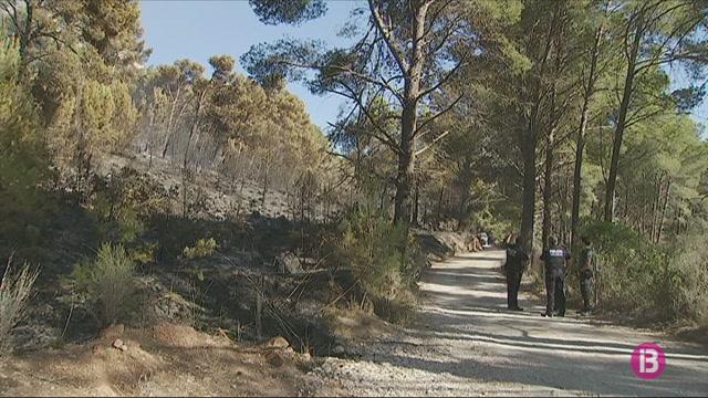 Dos+nous+incendis+forestals+a+Mallorca%3A+Cala+en+Basset+i+Tossals+Verds