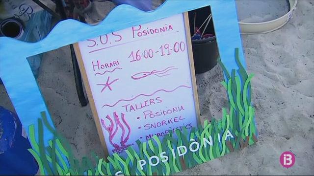 El+GOB+comen%C3%A7a+una+campanya+informativa+a+les+platges+sobre+la+posid%C3%B2nia