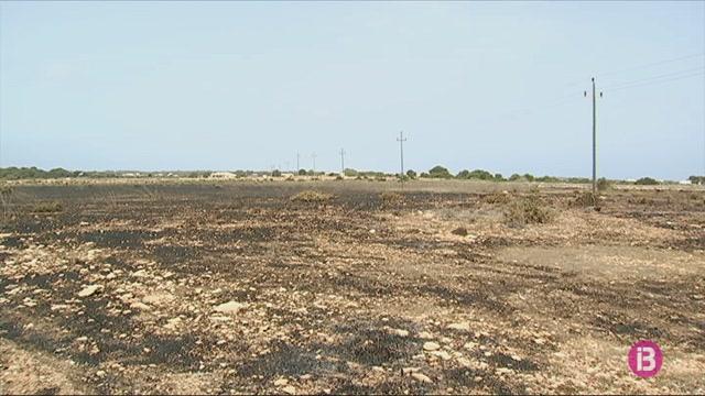 Es+cremen+tres+hect%C3%A0rees+de+terreny+agr%C3%ADcola+a+Formentera
