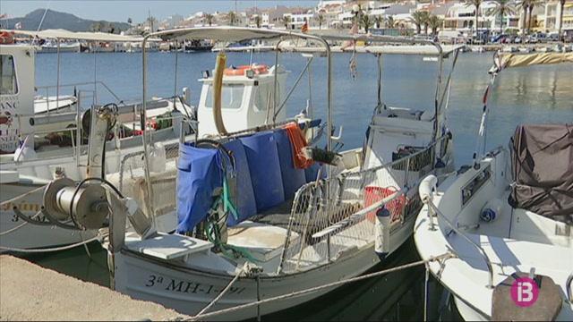 Els+pescadors+de+Menorca+capturen+un+25%25+m%C3%A9s+de+llagostes+que+l%27any+passat