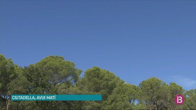 Comencen+a+Menorca+les+fumigacions+a%C3%A8ries+contra+la+procession%C3%A0ria+del+pi