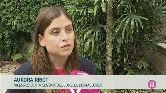 Satisfacci%C3%B3+al+Consell+de+Mallorca+per+l%27aval+del+Tribunal+Constitucional+a+la+Llei+de+Camins