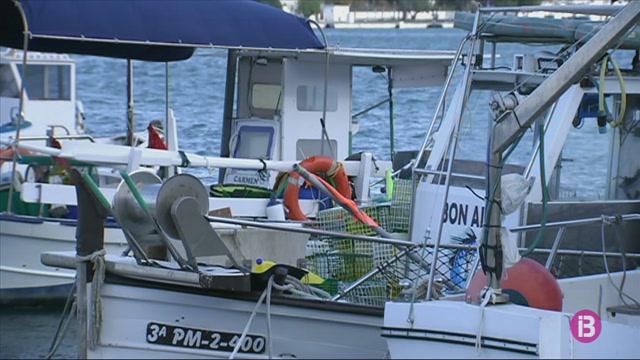 El+temporal+amena%C3%A7a+de+deixar+Menorca+sense+peix+local+tota+la+setmana