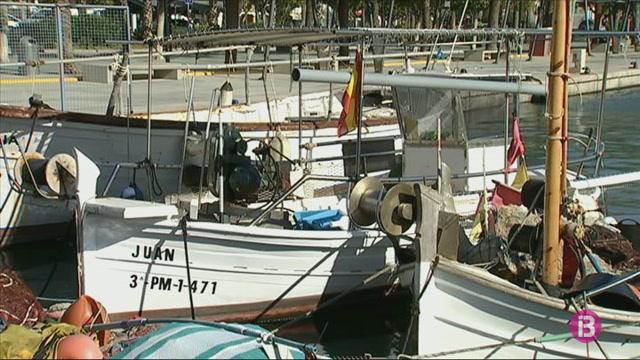 El+Govern+vol+engegar+el+nou+pla+de+gesti%C3%B3+de+pesca+entre+les+Piti%C3%BCses+i+Alacant+l%271+de+gener